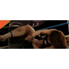 ARTS MARTIAUX / MMA